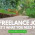 No freelance client?